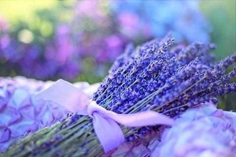 Aromaterapija edukacija